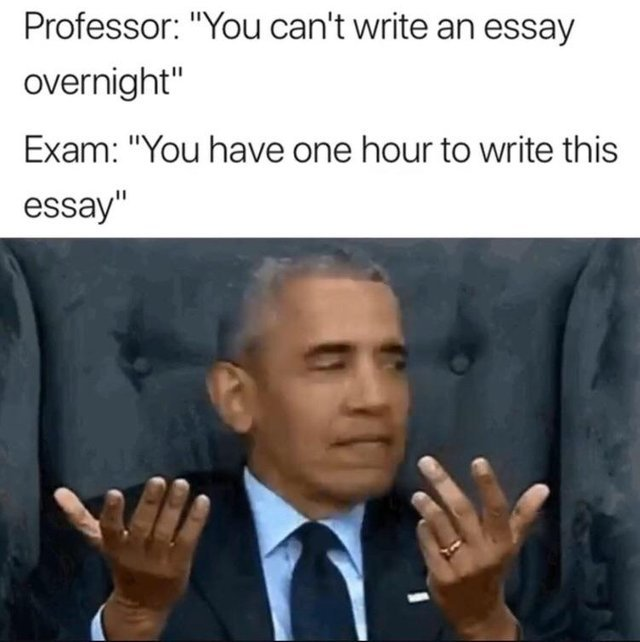 Writing essays - meme