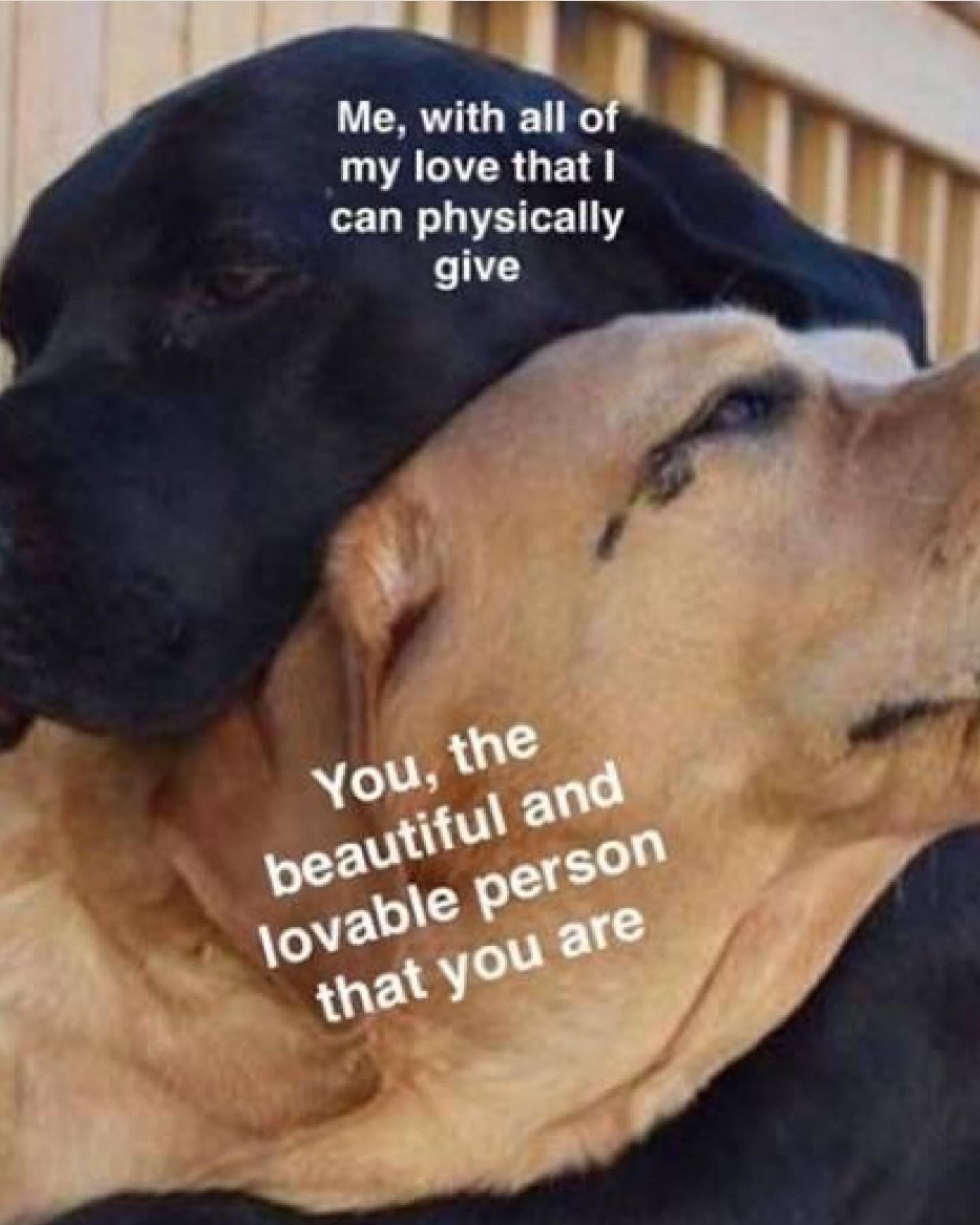 You are beautiful :) - meme