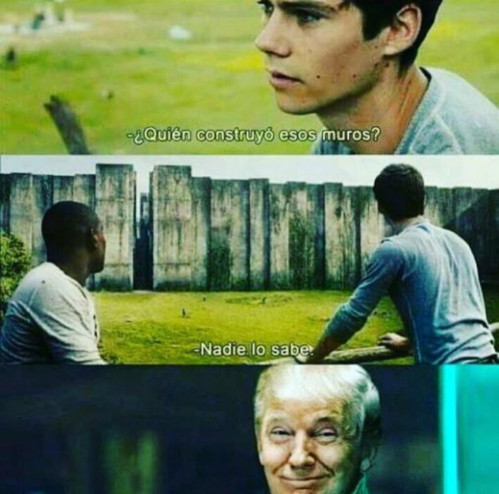 Si sos Trump @camaron_con_memes
