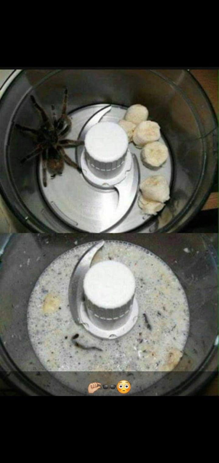 Batido de araña, ideal para morir - meme