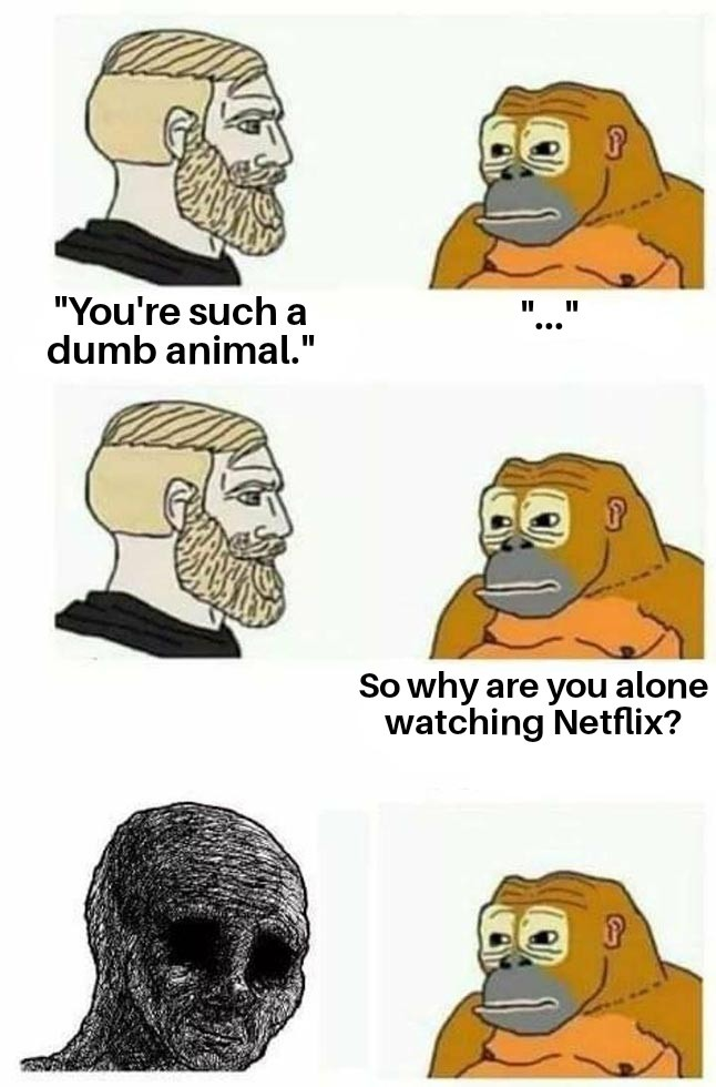 Who watches Netflix alone? - meme
