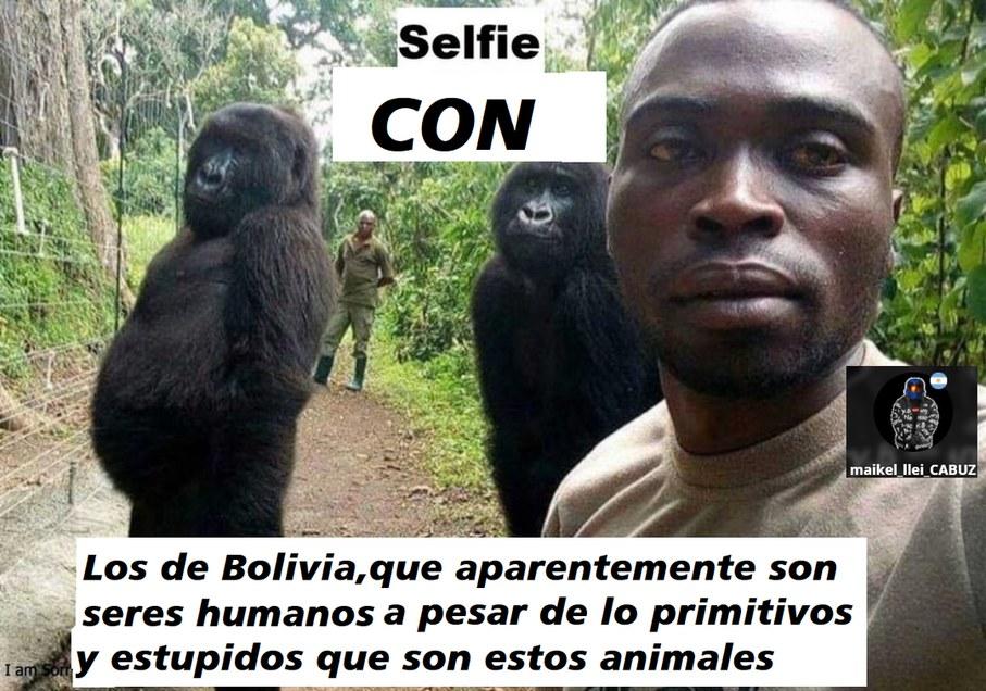bolivianos - meme