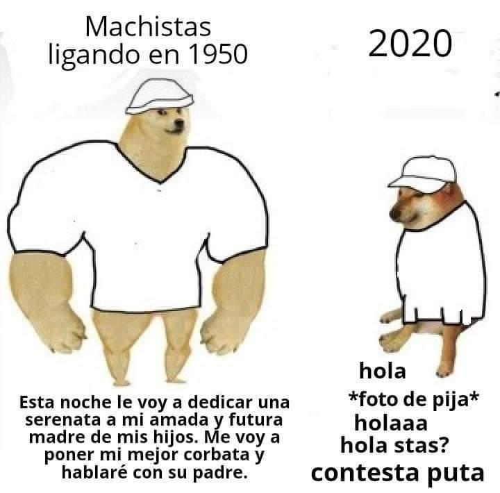 Plafff - meme