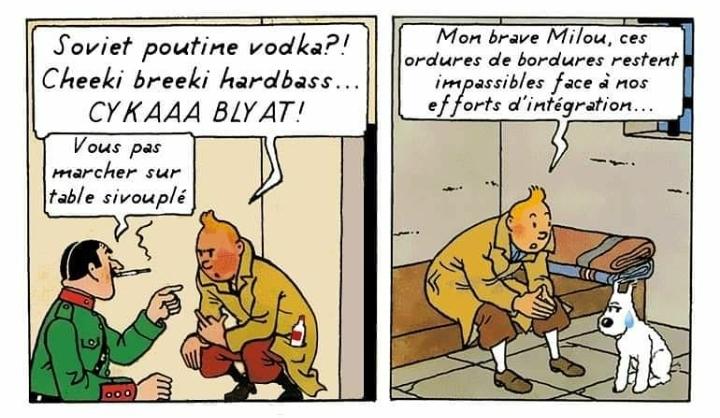 Tintin a bien compris la tolérance - meme