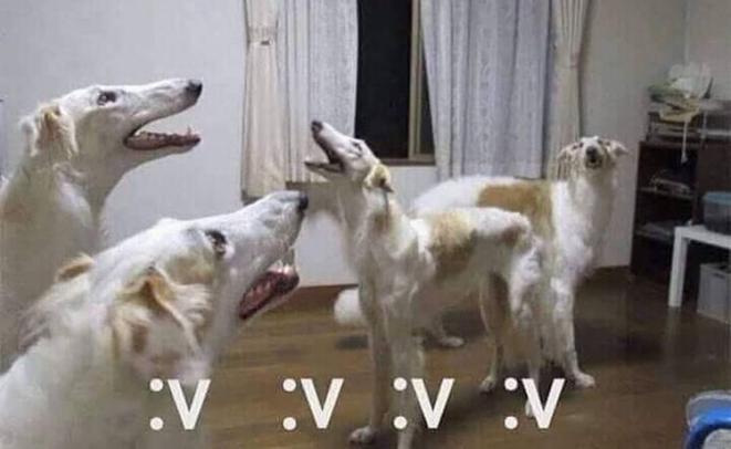 :v=:chad: - meme