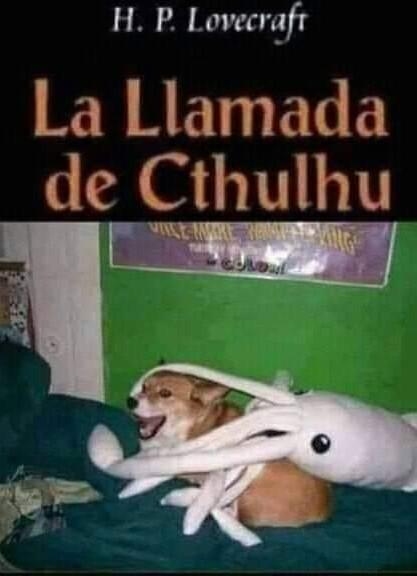 Pobre perro - meme