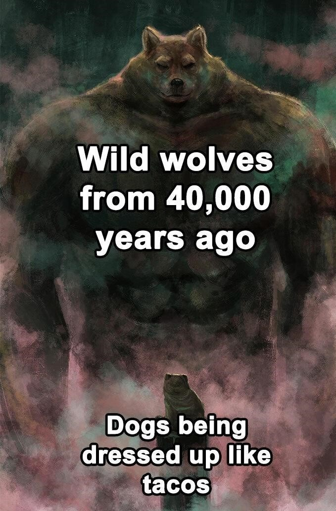 Thousands of years - meme