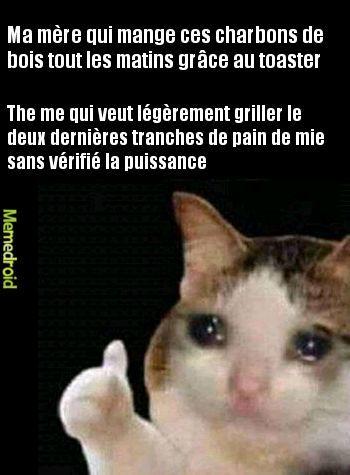 Vive le foie gras - meme