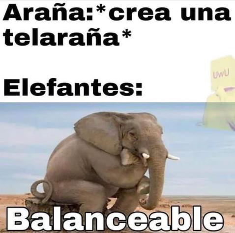 Jmm...balanceable - meme