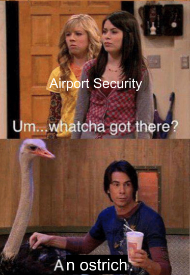 Airport Security, watcha got there? - meme