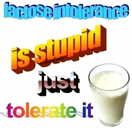 Intolerância a lactose é estupidez, basta tolerar - meme