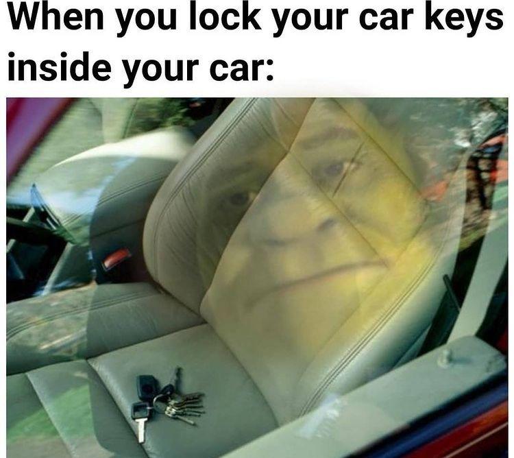shrek reflection - meme
