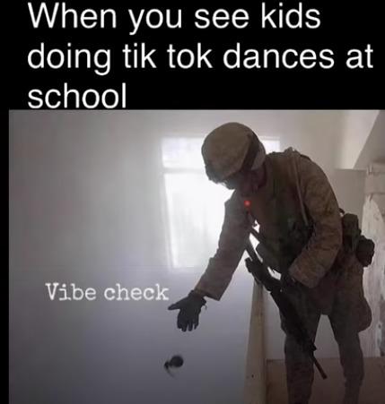 Tiktok dances disgust me - meme