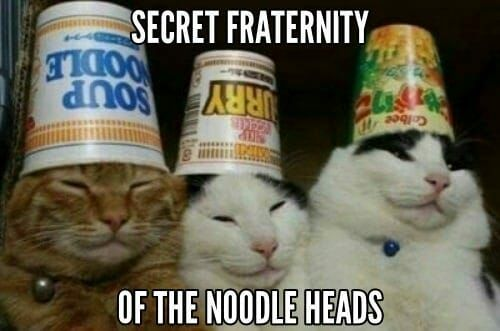 the grand Majestic Royal order of the noodle heads - meme