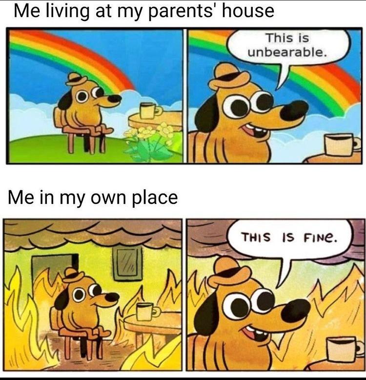this is fine - meme
