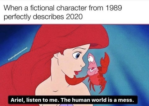 accurate description - meme