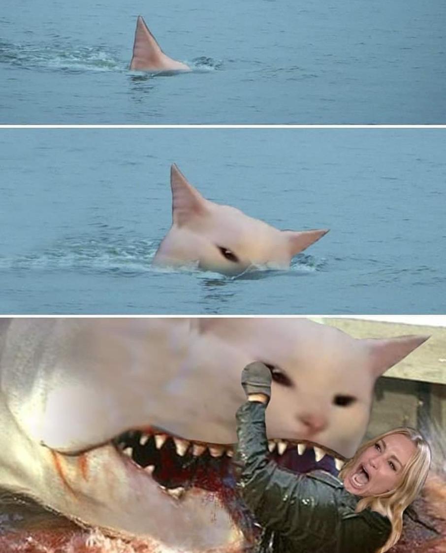 Les dents d'la grosse chatte - meme