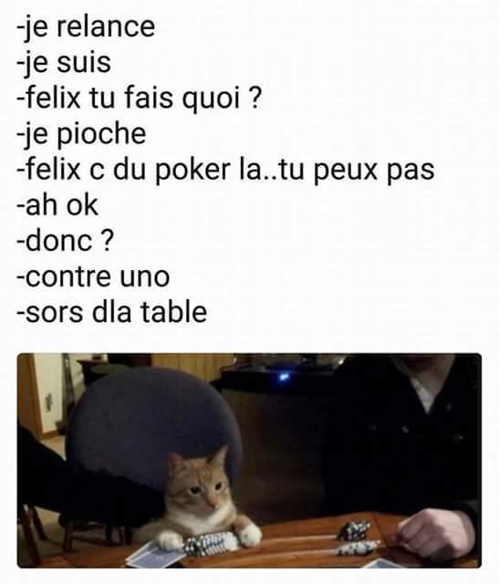 Pourquoi les chats s'appelle toujours félix? - meme