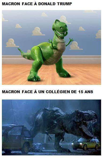 Tyranosaurus Macronus - meme