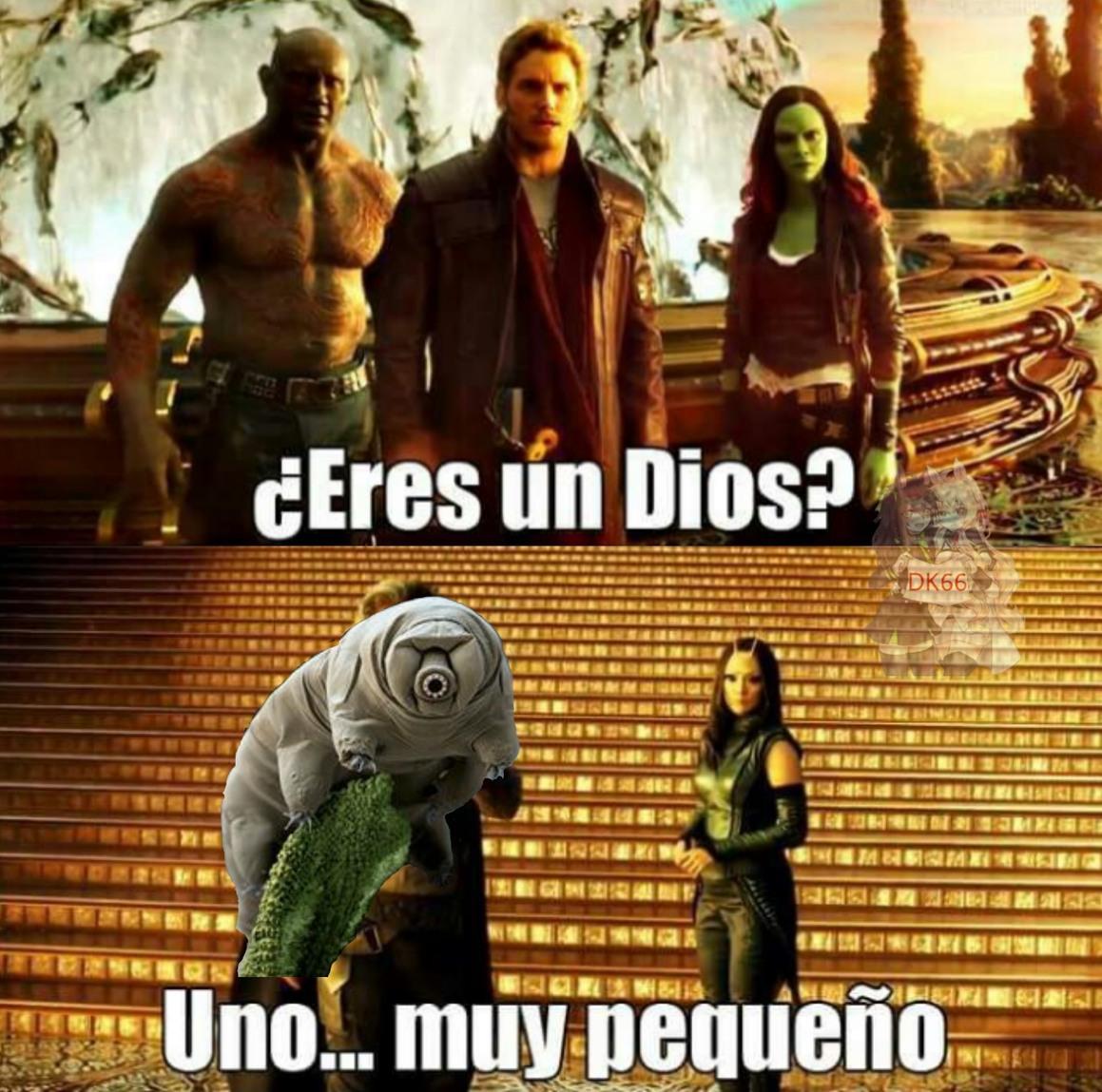 Dios chiquito - meme