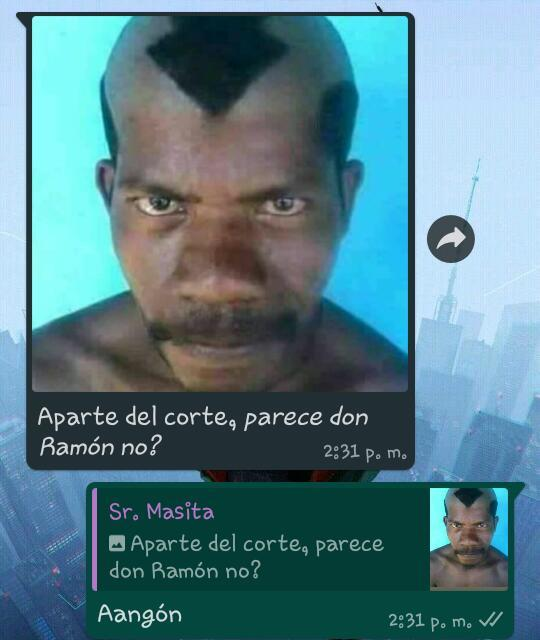 Avatar: la leyenda de Don Ramón - meme