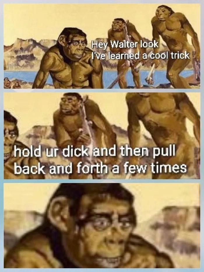 Evolutionary discovery - meme