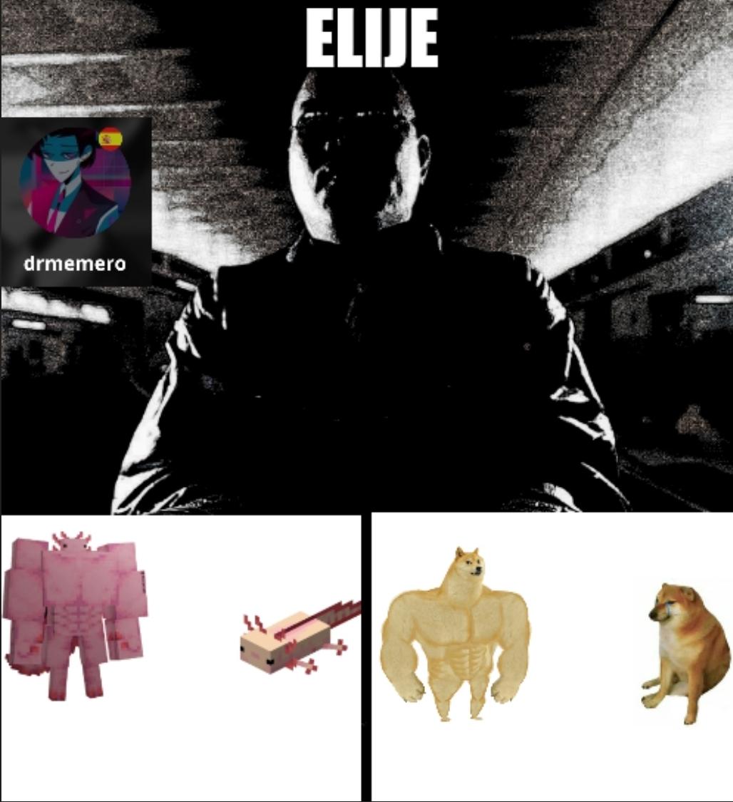Elije - meme