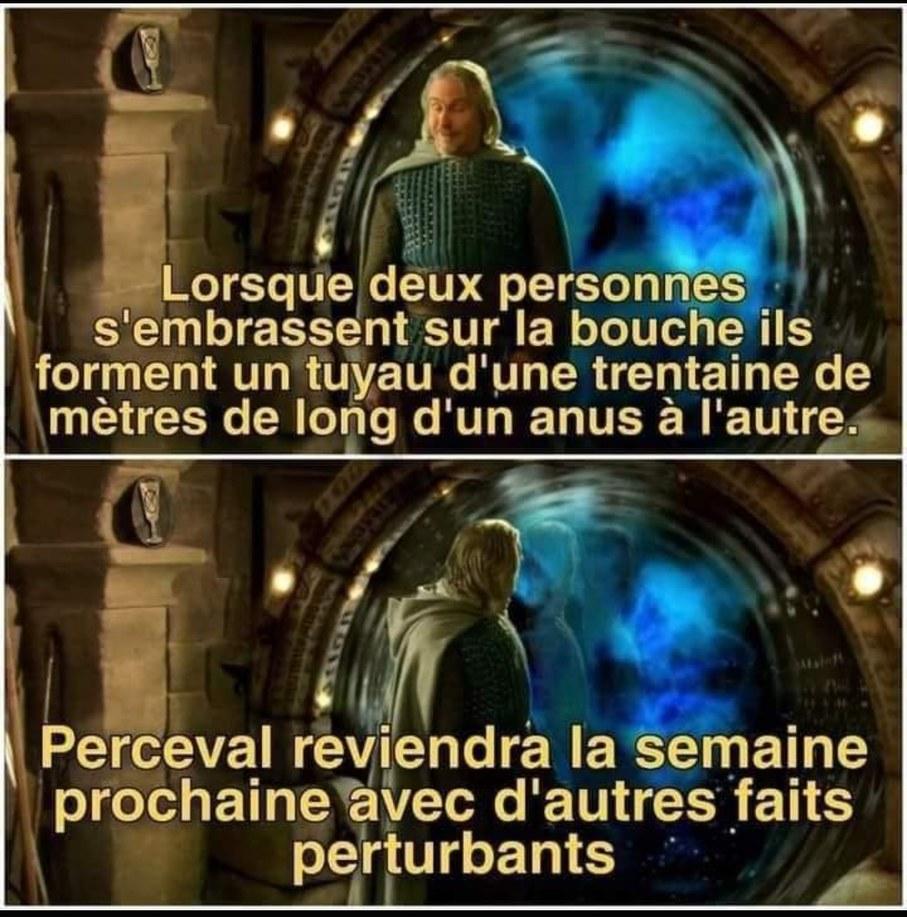 Camelote - meme