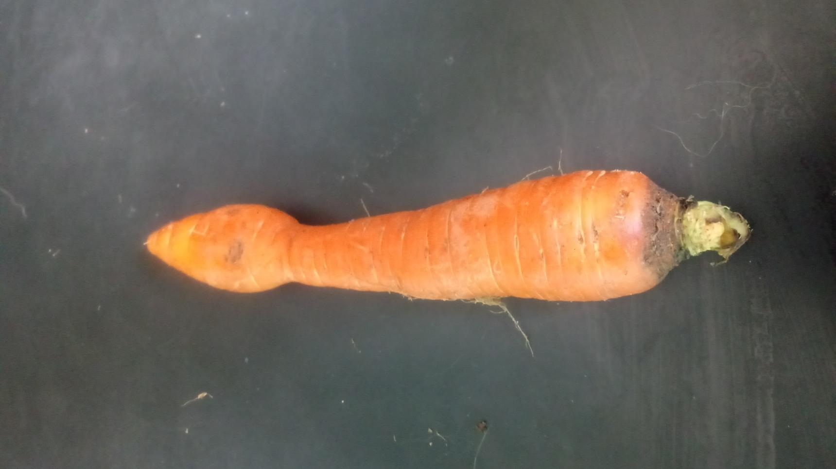 This carrot is so strange - meme