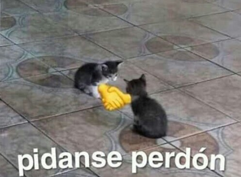 PIDANSE PERDON - meme
