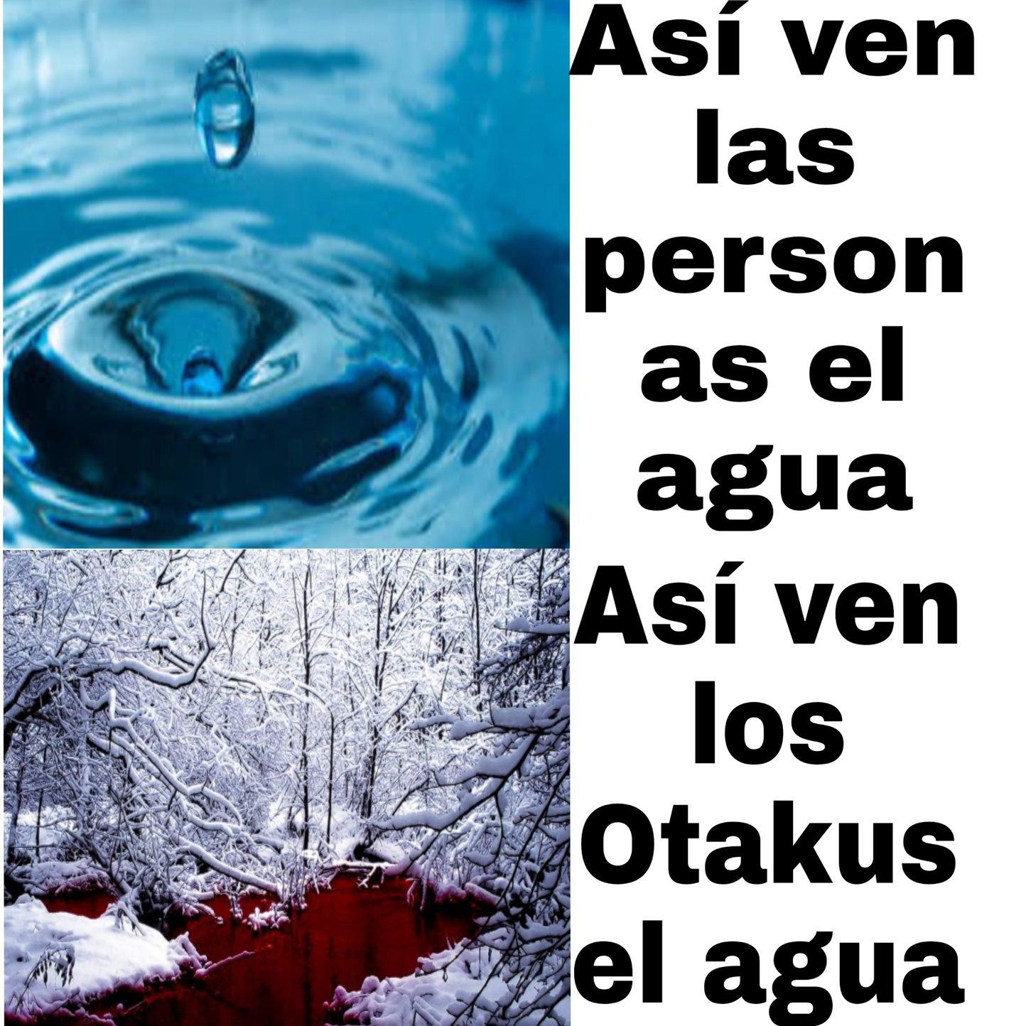 Tipo de otaku (no se ofendan) - meme