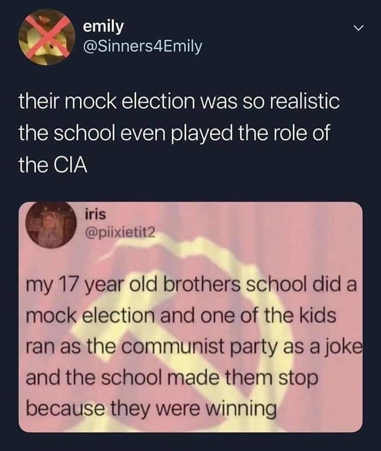 surprisingly realistic - meme
