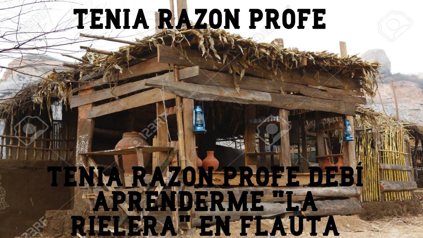 para quien no viva en mejico, la rielera es una cancion q se cantaba en la revoluion mejicana :l - meme