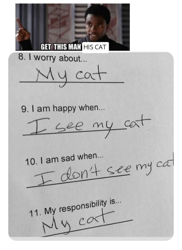 Cats are the best. - meme