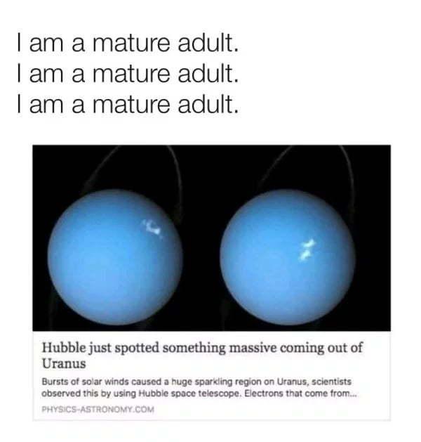 I am a immature adult - meme