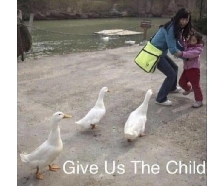 Duck simulator - meme