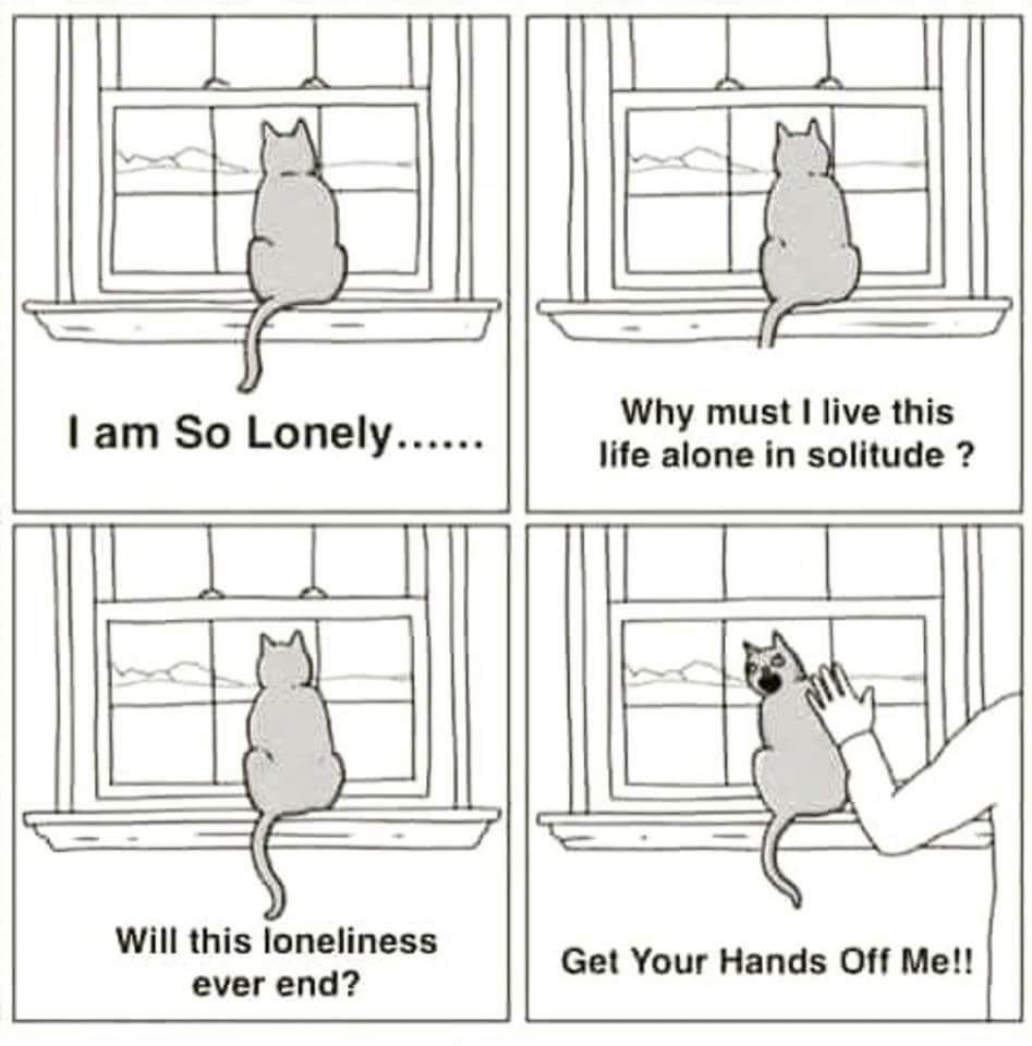 Forever Alone - meme