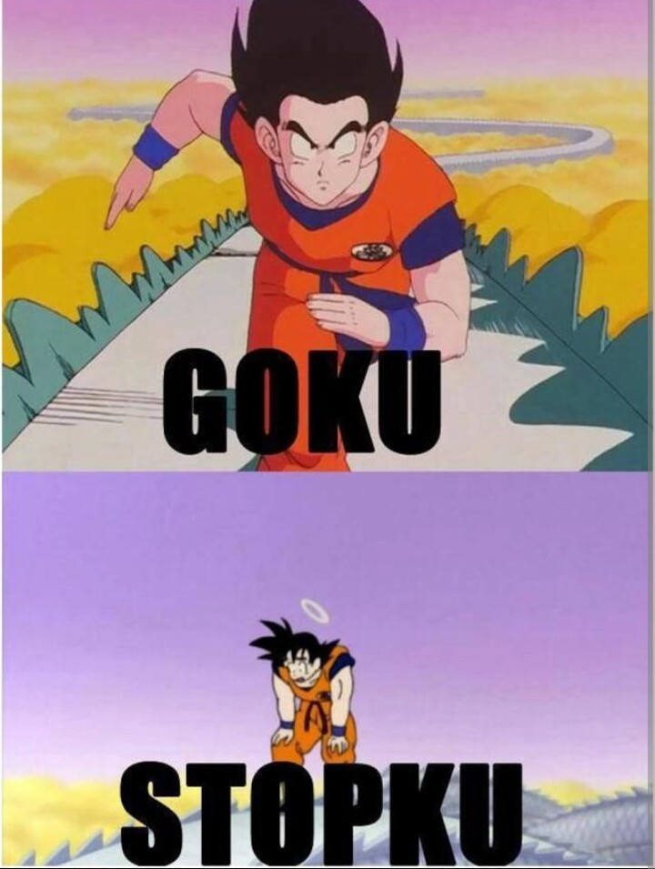 Goku Stopku - meme