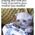 Uh yes ... i studied my lessons
