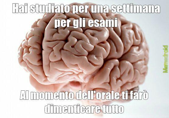 Cervello, perchè non capisci che ho bisogno di te - meme
