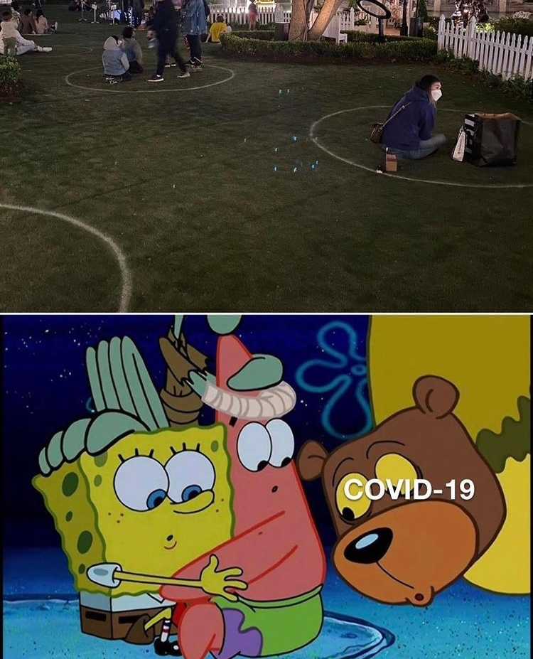 sea bear - meme