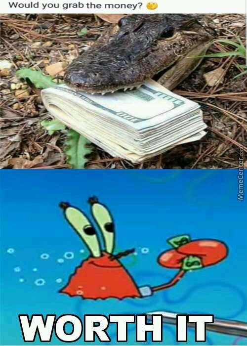 Grab that croc with a choke - meme