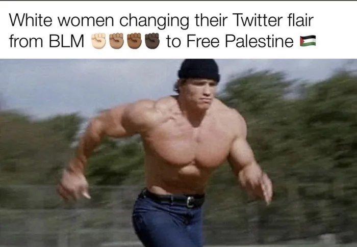 Left Liberals on Twitter be like - meme
