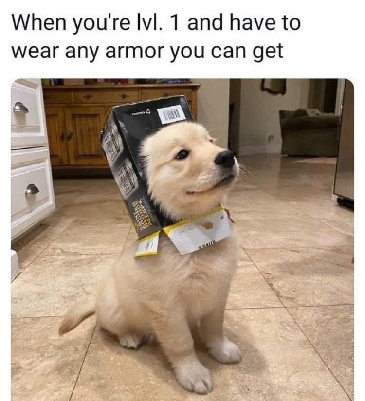 doggo knight - meme