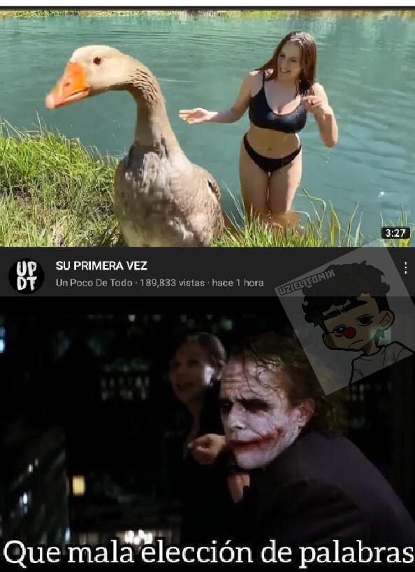 El pato solo fue a nadar por primera vez - meme