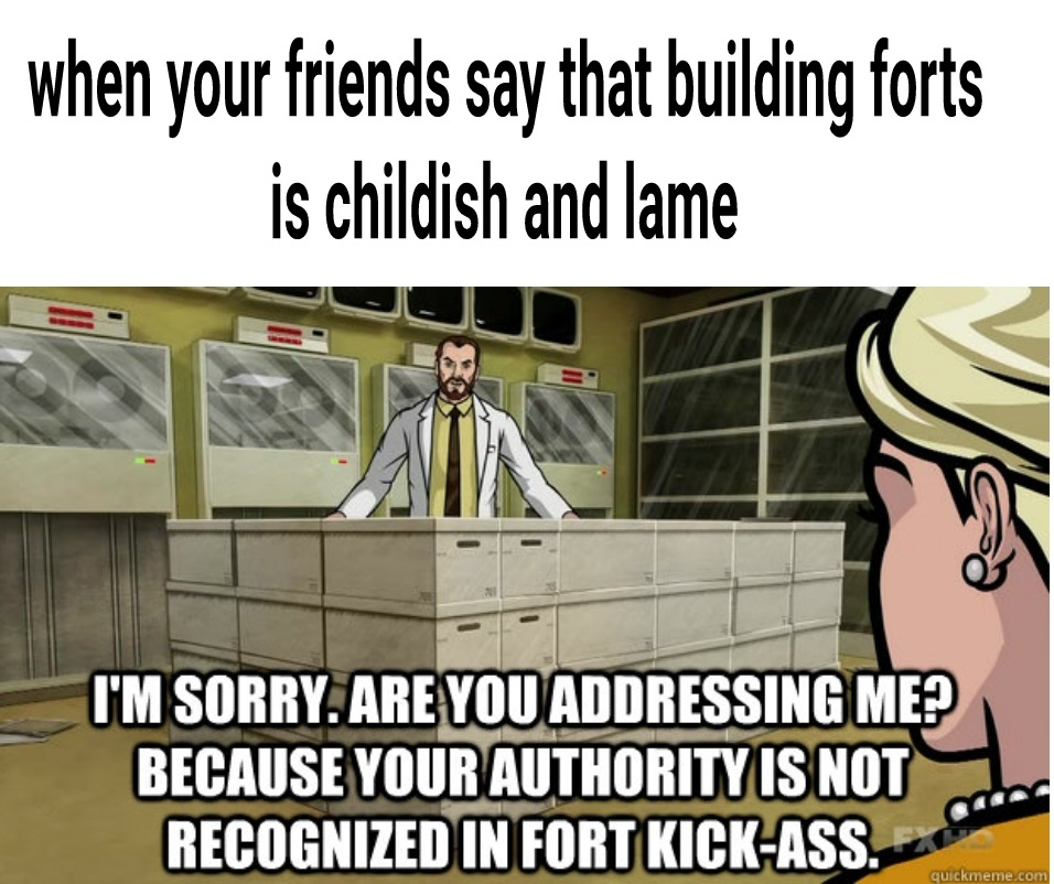 Building forts is a sacred childhood memory - meme
