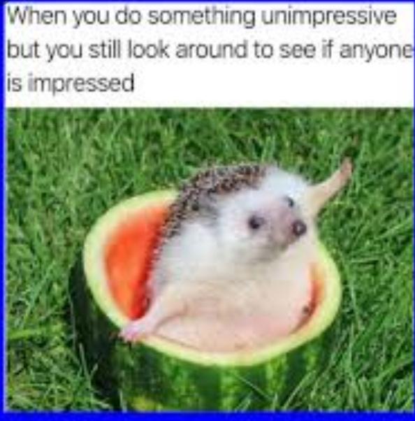 Crappy Crop - meme