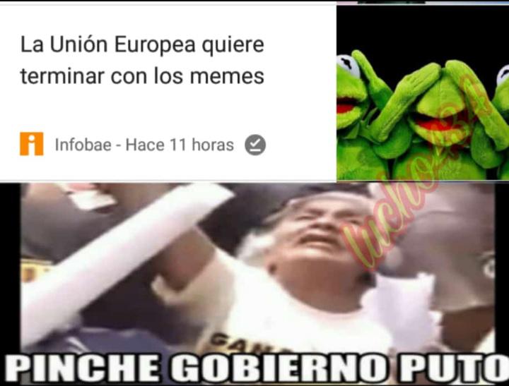 Verga güey ;-; - meme