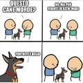 Evviva i cani