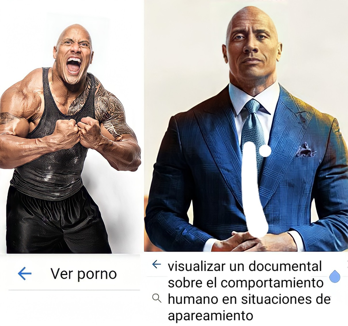 Visualizar - meme